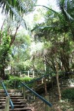 Thomas Hogan Reserve