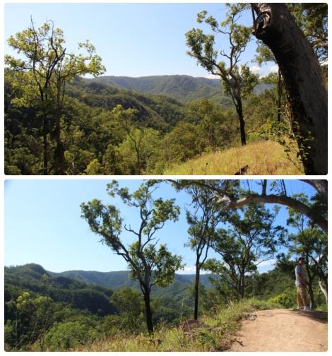Girrigun National Park - VoyageDesFruits