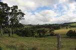 #Queensland
