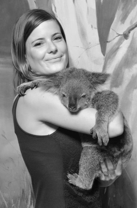 #koala