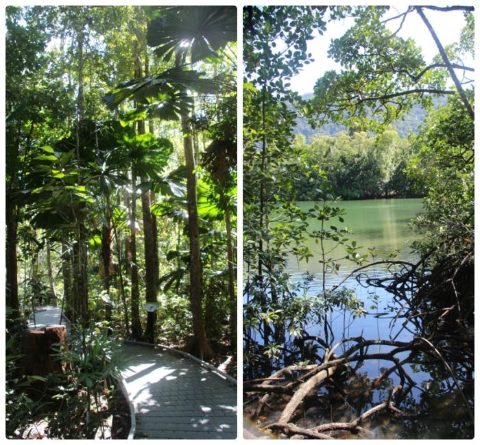 Marrja Botanic Walk - VoyageDesFruits