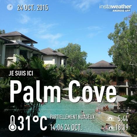 #PalmCove