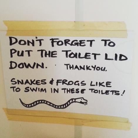 #snake