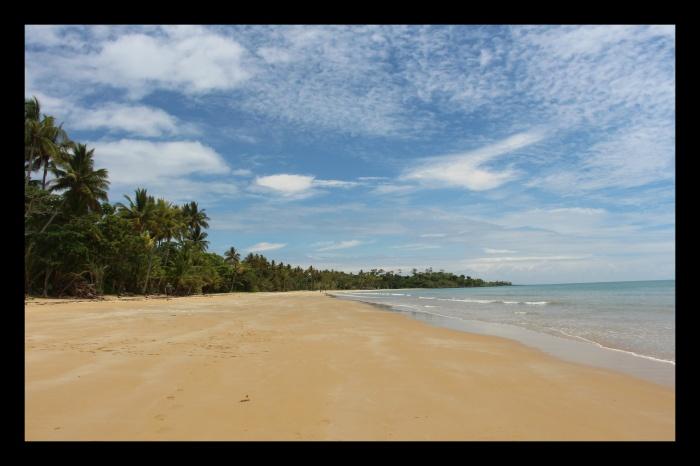 Mission Beach - VoyageDesFruits