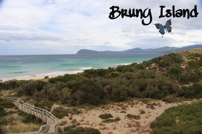#BrunyIsland