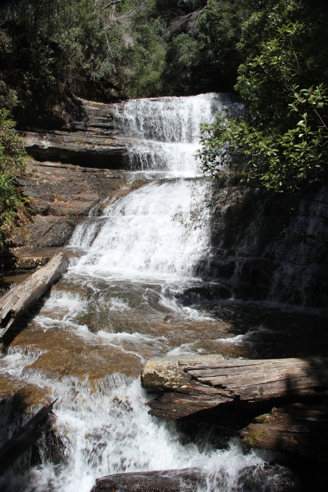 #Falls