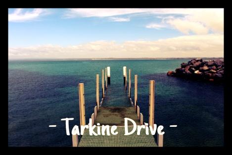 Présentation Tarkine Drive - VoyageDesFruits