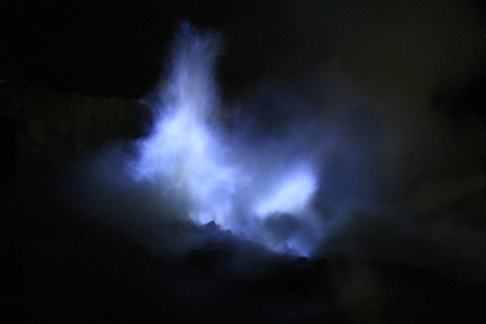 Flammes Bleues - VoyageDesFruits