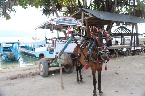 Gili Air Island - VoyageDesFruits (7)