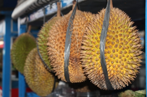 #Durian