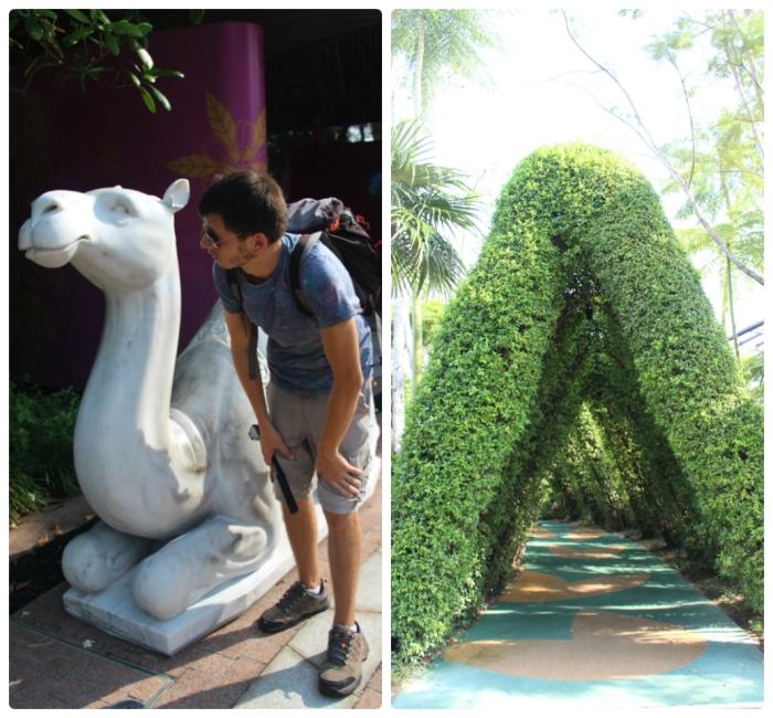 Botanic Garden Singapore - VoyageDesFruits