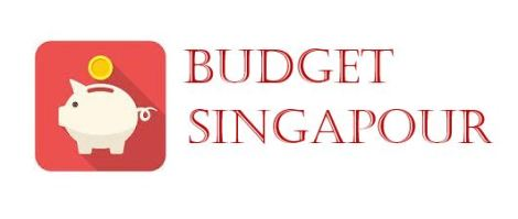 Budget Voyage Singapour - VoyageDesFruits