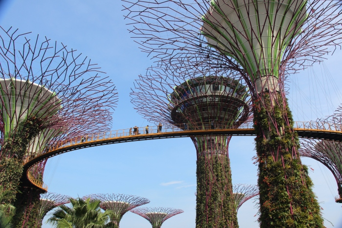 Garden by the bay - VoyageDesFruits