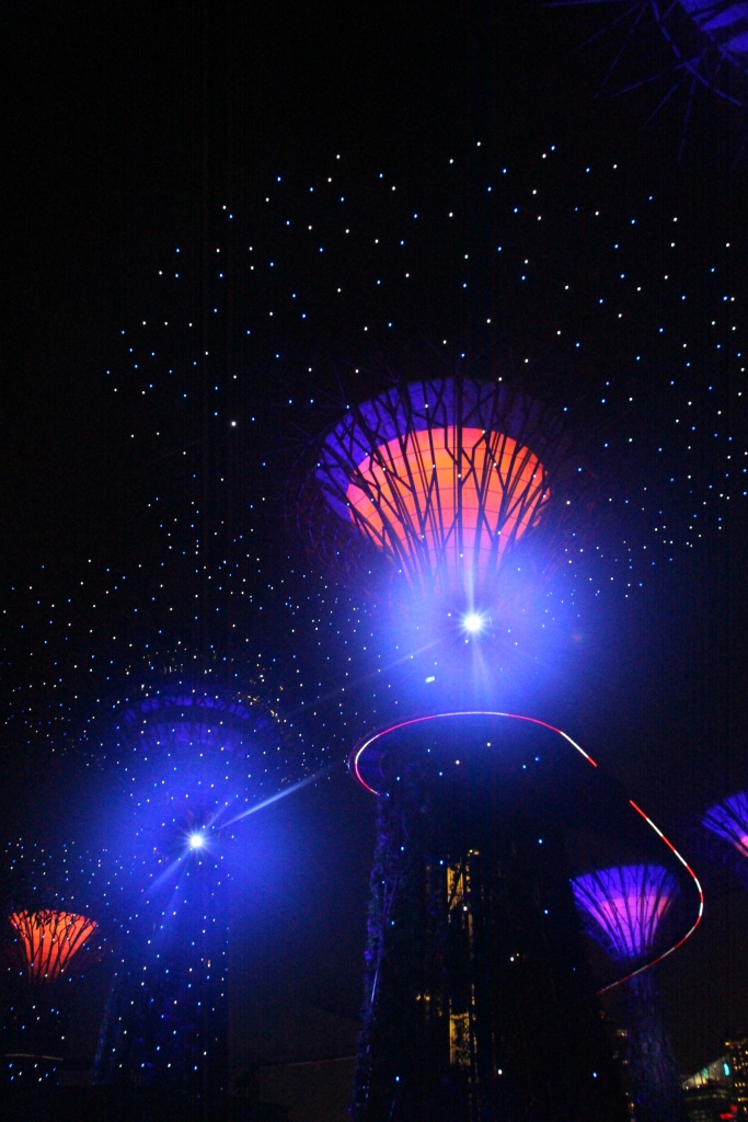 Singapore by night - VoyageDesFruits