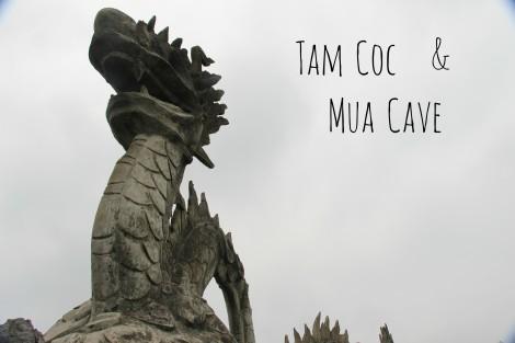 TAM COC MUA CAVE