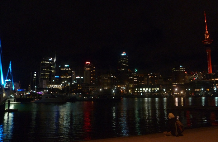 auckland-by-night-voyagedesfruits