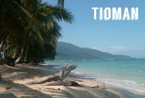 tioman-voyagedesfruits