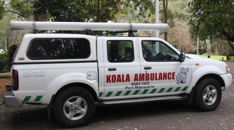 koala-ambulance-voyagedesfruits