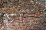 Peinture rupestre - Kakadu